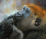 Award Posters - Oil on Canvas-Print-Gorilla Day Dreams Poster by Adrian Tavano