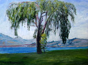 Marie Bergman - Okanagan Willow