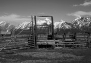 Fences Prints - Okay Corral 2 Print by Mel Steinhauer