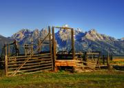 Grand Tetons Framed Prints - Okay Corral Framed Print by Mel Steinhauer