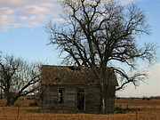 Sheds Photos - Oklahoma Shack by Ellen Henneke