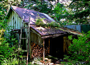 Fire Wood Prints - Old Alaskan Homestead Print by Robert Bales