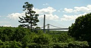 David Fiske Metal Prints - Old and New Bridges over Penobscot Metal Print by David Fiske