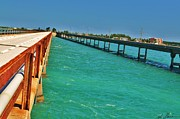 Florida Bridges Digital Art Prints - Old and New Seven Mile Bridge Print by Angelina  Forcine