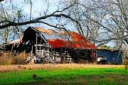 Dothan Alabama Framed Prints - Old Barn 16 Framed Print by Andy Savelle