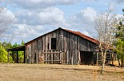 Dothan Alabama Framed Prints - Old Barn 19 Framed Print by Andy Savelle