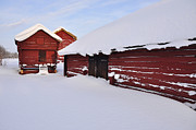 Snowy Pyrography - Old barn by Conny Sjostrom