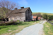 Old Country Roads Prints - Old Barn in Antioch California 5D22271 Print by Wingsdomain Art and Photography