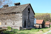 Old Country Roads Prints - Old Barn in Antioch California 5D22272 Print by Wingsdomain Art and Photography