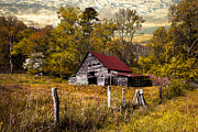 Dairy Barns Posters - Old Barn in Autumn Poster by Debra and Dave Vanderlaan