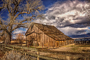 Janis Knight - Old Barn in Franktown