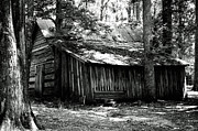 Donald Williams - Old Barn in Georgia