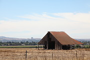 Old Country Roads Prints - Old Barn in Petaluma California 5D24404 Print by Wingsdomain Art and Photography
