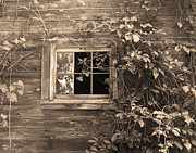 Cabin Wall Posters - Old Barn Window Poster by Brooke Ryan