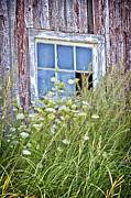 Verena Matthew - Old Barn Window