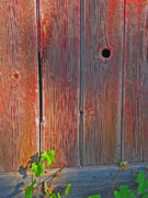 Knothole Prints - Old Barn Wood Print by Ann Horn