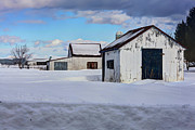 Hay Bale Photos - Old Barns in Winter by Sophie Vigneault