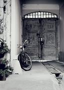 Old Bicycle Print by Jelena Jovanovic