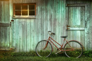 Shed Metal Prints - Old bicycle leaning against grungy barn Metal Print by Sandra Cunningham