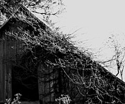 Linda Cox - Old Black And White Barn