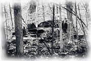Miss Dawn - Old Car In The Woods...
