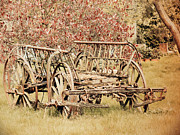 Susan Tinsley - Old cart