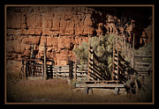 Branding Framed Prints - Old Cattle Branding and Loading Chute Framed Print by Ernie Echols