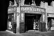 Nadal Posters - Old Chemist Shop Farmacia Nadal On La Rambla Barcelona Catalonia Spain Poster by Joe Fox