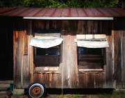 Rusted Tin Roof Photos - Old Country Shed by Paul Sisco