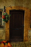 Planter Framed Prints - Old Door Framed Print by Cecil Fuselier