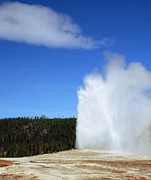 Kathleen Struckle - Old Faithful #7