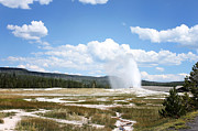 Jeffcoat Art - Old Faithful