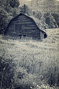 Grown Photos - Old falling down barn blue by Edward Fielding
