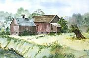 Old Barns Paintings - Old Farm Buildings by Susan Crossman Buscho