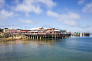 Fishing Art - Old Fishermans Wharf In Monterey by Priya Ghose
