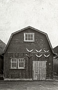 Old Prints - Old Fishing Shack PEI Print by Edward Fielding