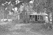 Old Florida House Pencil Print by Ronald T Williams