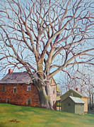 Tree. Sycamore Paintings - Old Friends by Diane Hutchinson