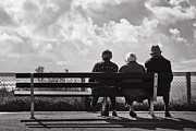 Duotone Photos - Old friends by Jimmy Karlsson