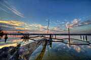 Manasquan Reservoir Prints - Old Friends Print by Michael Ver Sprill