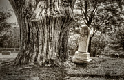 Headstone Photos - Old Friends by Scott Norris