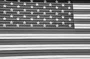Stripe.paint Posters - Old Glory bw Poster by Elizabeth Sullivan