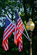 Patty Finney - Old Glory Pennsylvania...