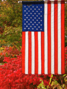 Ron Roberts Photography Posters - Old Glory Poster by Ron Roberts