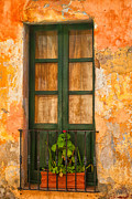 Nelieta Mishchenko Posters - Old Green window Poster by Nelieta Mishchenko