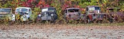 Autumn Foliage Photos - Old Guys Rule Panoramic by Edward Fielding