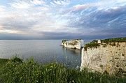 Chalk Cliffs Art - Old Harry Rocks by Helen Hotson