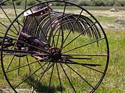 Kae Cheatham - Old Hay Rake