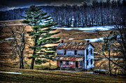 Old Home Place Beside Pine Tree Print by Dan Friend