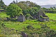 Jane McIlroy - Old Homestead Ireland